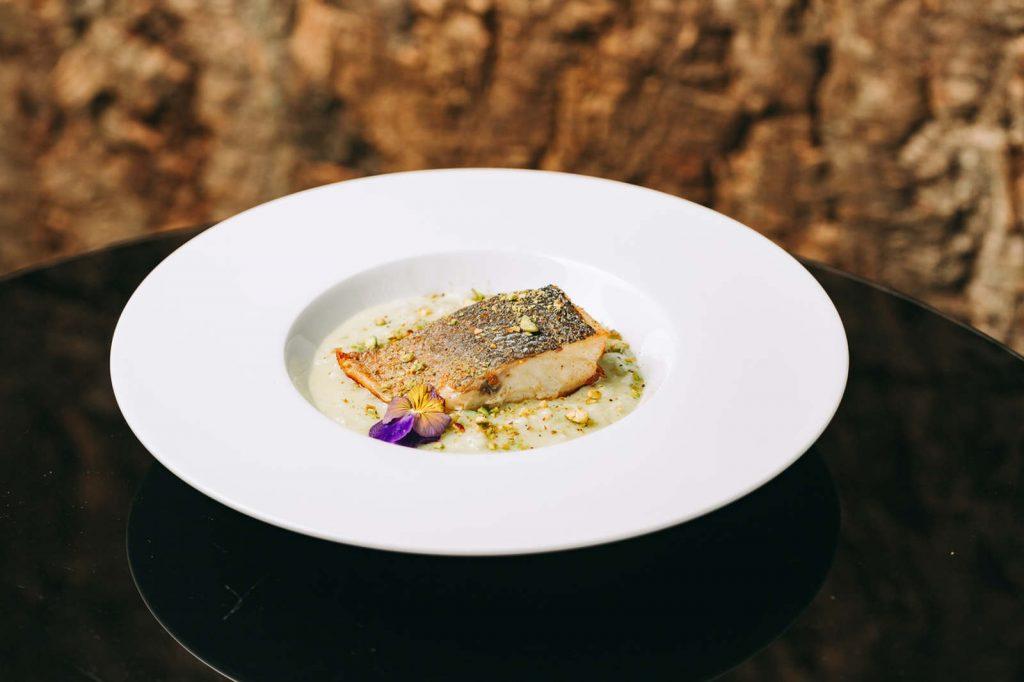 Pratos frescos e deliciosos no Porto